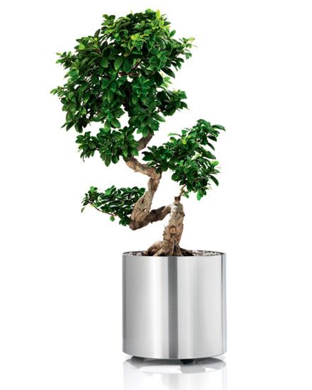 Greens Round Tall w. Castors·
