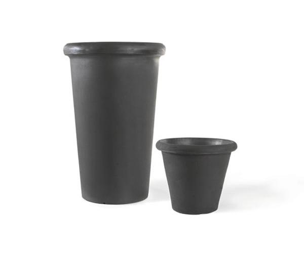 Product Image CAMELIA