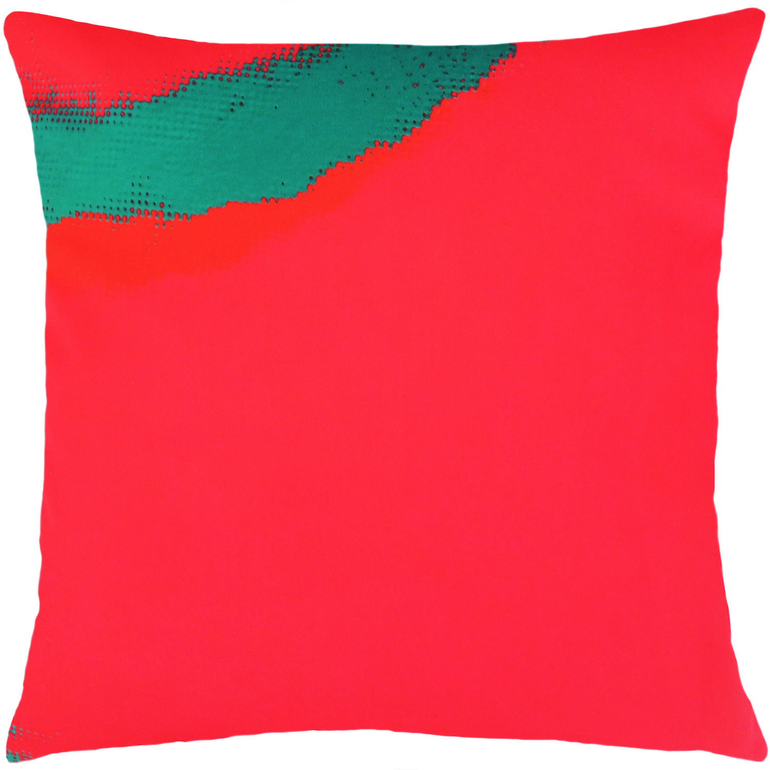 Product Image _Andy Warhol | Art Pillow AW02