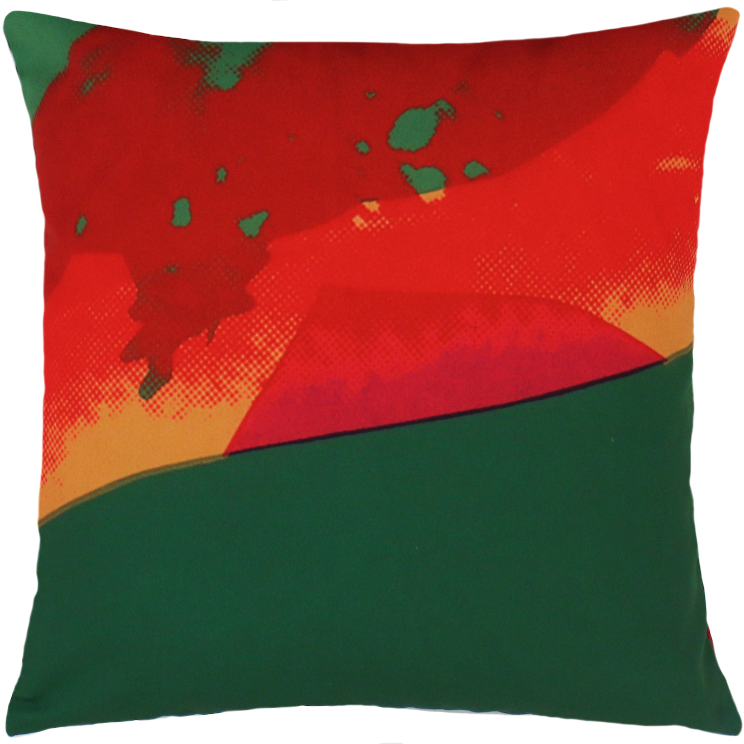 Product Image _Andy Warhol | Art Pillow AW04