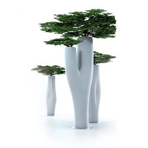 MISSED TREE·